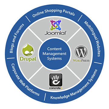 digitera_content_management_system